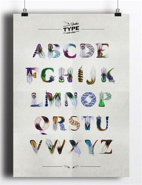 typography beautiful and bird feathers on