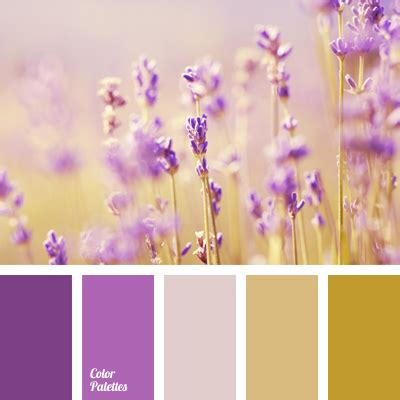 lavender color scheme colors of lavender field color palette ideas
