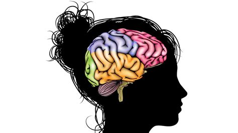 brain images care and feeding of your brain build health naturally