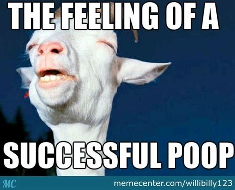 Shit Meme - successful poop by willibilly123 meme center