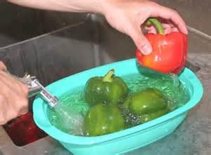 oms alimentos el diario recomendaciones de oms para preparar alimentos