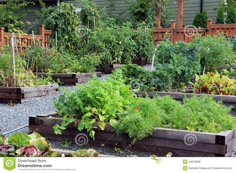 Community Vegetable Gardens Community Vegetable Garden