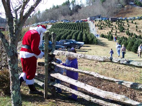 a picture esque look at holiday tradition in blowing rock