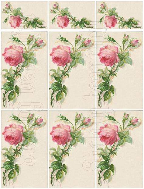 top 28 shabby chic catalogs shabby chic vintage seed catalog digital by duo of vases in