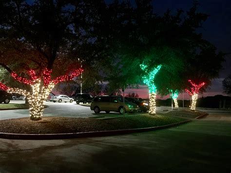 christmas tree lighting installed led mini lights frisco lights