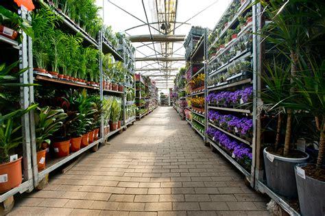 ingrosso fiori ingrosso fiori roma come avviare un negozio di fiori