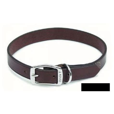 black leather collar circle t circle t black leather town collar leather collars