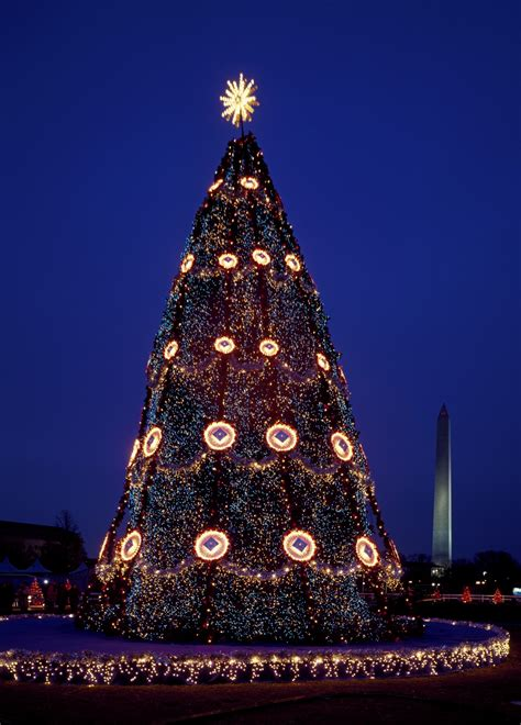 usa national christmas tree free stock photo public