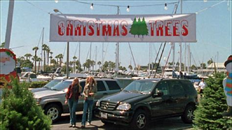 tree lot ideas fundraisers fundraising ideas
