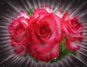 imagenes de rosas q brillan gifs de rosas para facebook 2
