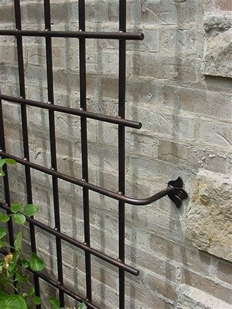 garden wall trellis metal best 25 metal trellis ideas on metal garden trellis vine trellis and trellis on fence