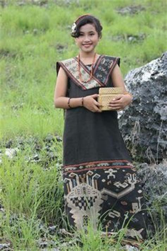 Tenun Ikat Etnis Timor 1 kain tenun ntt motif insana kain tenun timor ntt www tenuntimor