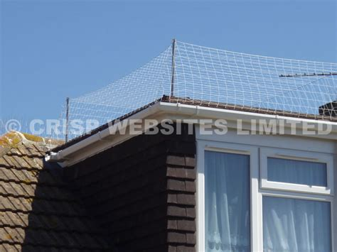 Roof Dormer Kits seagull netting kit tools net fixings from stock