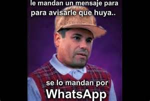 El Meme - 1000 images about memes on pinterest