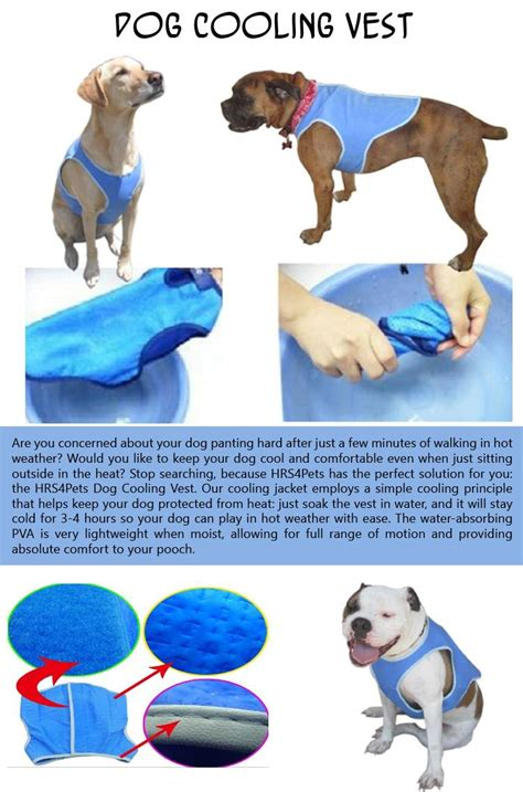 cooling vest for dogs is your ready for summer 10 pics