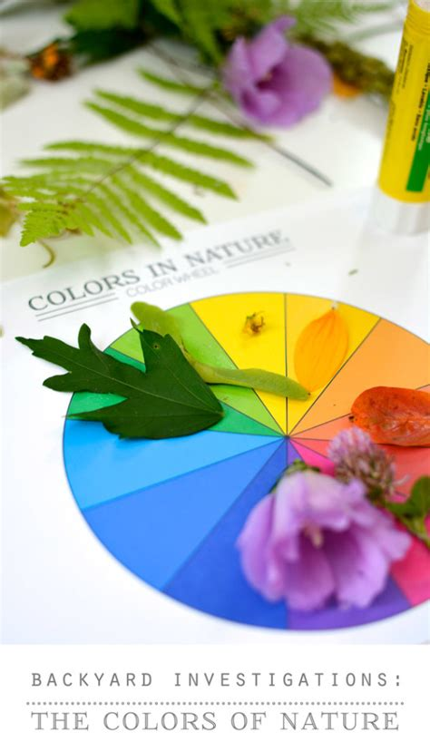 backyard science videos backyard science the colors of nature video activity printable playful learning