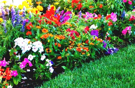 flower garden layout ideas flower bed ideas for front of house back front yard