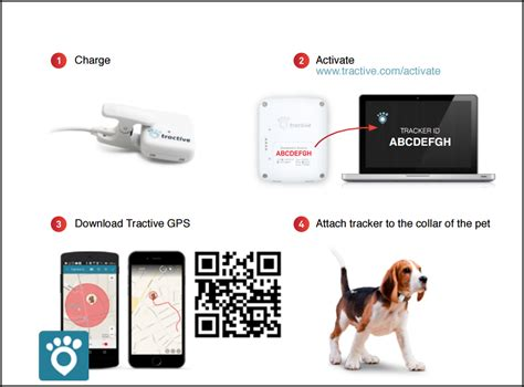 gps microchip for dogs gps tracker for dogs
