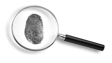 What Can Be Expunged From A Criminal Record Can An Expunged Record Be Found In A Background Check