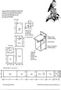 owl house plans pdf diy bird house plans barn swallows bed end
