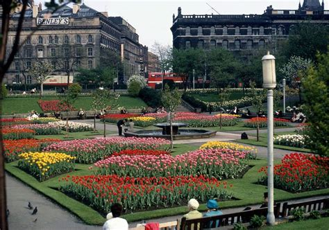 Manchester Gardens by Manchester Piccadilly Gardens 1960