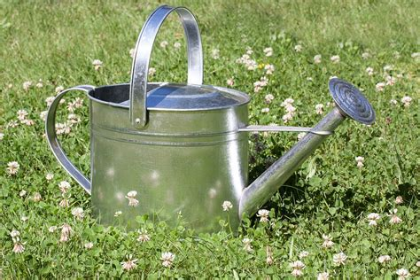 Watering Can Shower by Free Photo Watering Can Sprinkler Vessel Free Image On Pixabay 397290