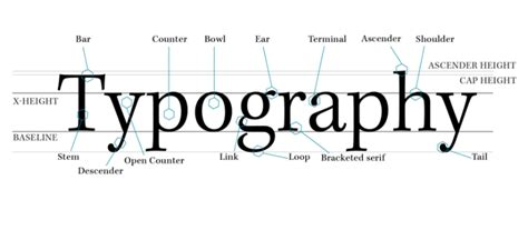 typography diagram type terminology booklet moodboard artedelic