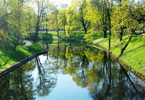 Pictures Of Cherry Blossoms by Spring In Latvia 171 Tours In Riga And Latvia