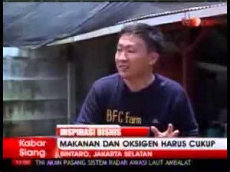 Seri Budi Daya Lobster Air Tawar inspirasi bisnis budidaya lobster air tawar