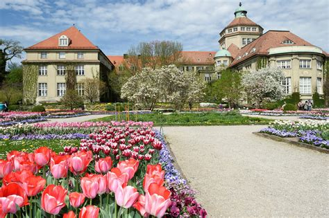 Munich Botanical Gardens Munich S Best Parks Arts In Munich