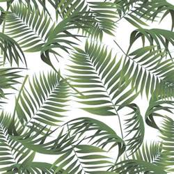 25 best ideas about palm tree leaves on pinterest palms palm and palm trees