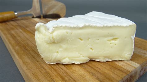 brie cheese www pixshark com images galleries with a bite