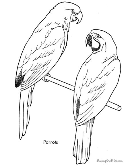 free coloring pages of songbirds free bird coloring pages bird coloring sheet church