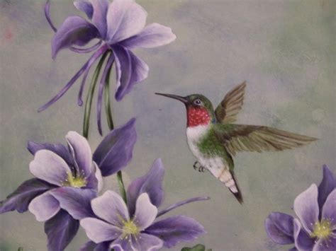 ruby throated hummingbird nancyterrill