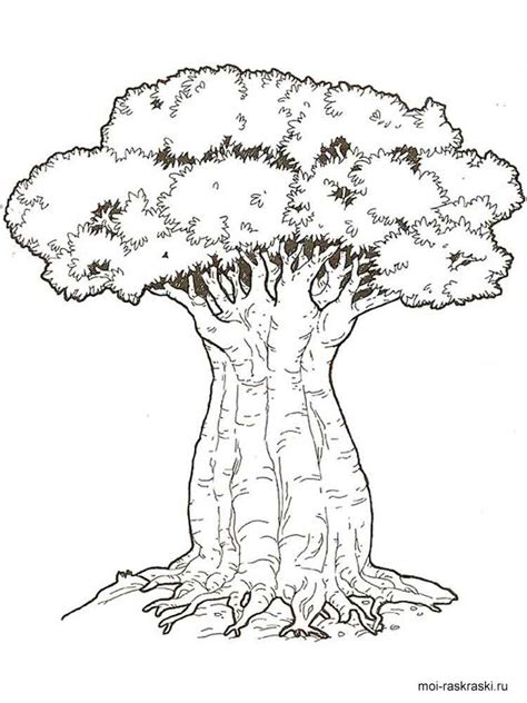 Tree Trunk Coloring Page by Coloring Pages Tree With No Leaves Coloring Page Tree Trunk