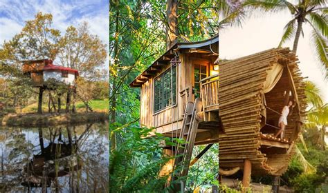 best tree houses in the world 5 instagram worthy tree house hotels that you should