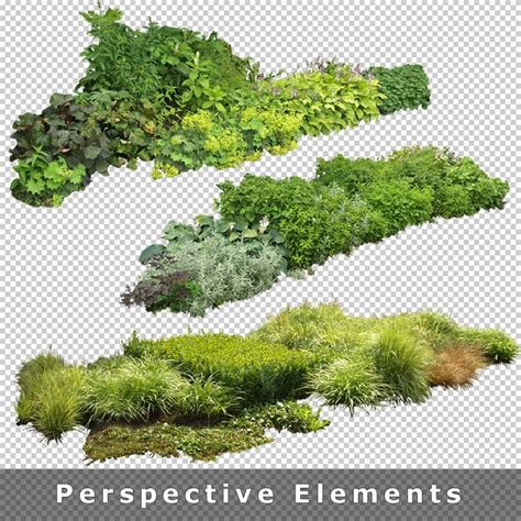 render plant 57 best for rendering plant images on pinterest