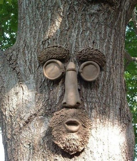 tree faces 25 best ideas about tree faces on pinterest tree