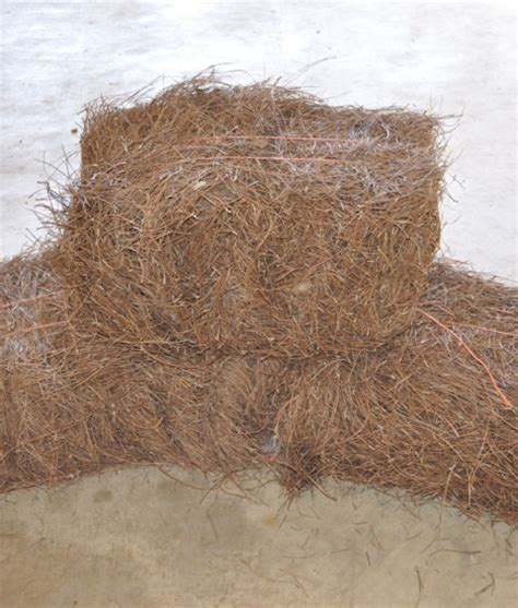 Landscape Fabric Grass Seed Pine Straw Bales Indianapolis Pine Straw Grass Seed