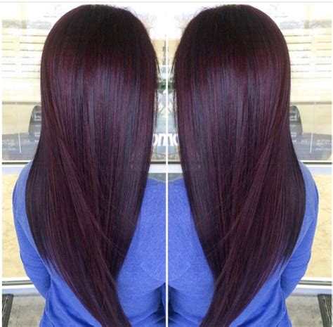 what hair dye color is plum brown plum brown paul mitchell trends plum pinterest