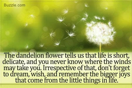 what does a dandelion tattoo really symbolize
