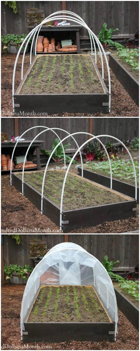 diy greenhouse ideas  step  step plans