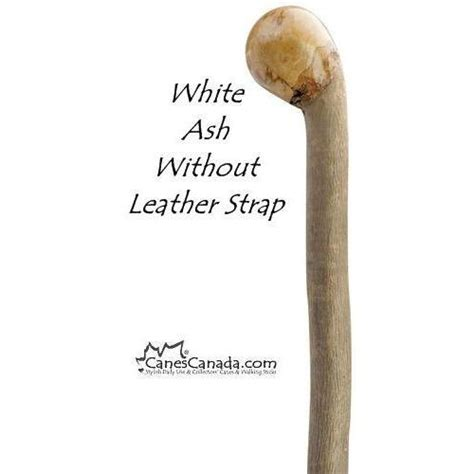 Knob Of Root by White Ash Root Knob Walking Stick