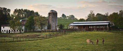 farm to table nashville hermitage hotel best restaurants nashville farm to