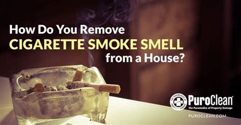 removing cigarette smoke smell from house home smoke smell and blog on pinterest