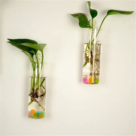 Hanging Glass Flower Vases by New Clear Hanging Glass Vase Flower Plants Terrarium Vase Container Micro Landscape Diy Wedding