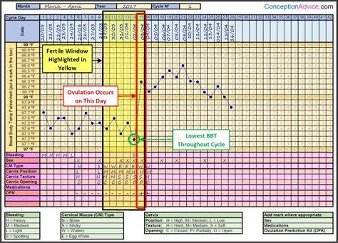 the best ovulation calculator fertility charting fertile window calculator