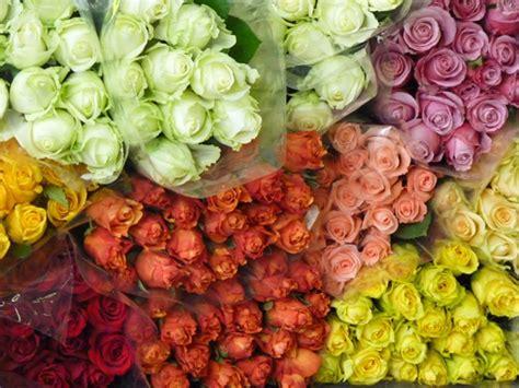 mercato dei fiori via trionfale 45 mercato dei fiori e delle piante ornamentali mercati di roma