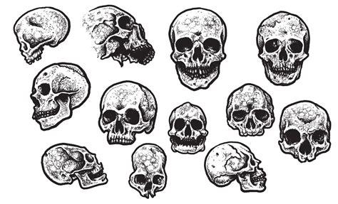 jeff finley s skull vector pack for go media