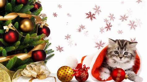 imagenes navideñas tejidas banco de im 225 genes para ver disfrutar y compartir 28
